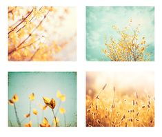 Nature Photo Set of 4 8x10 Photography Prints, spring yellow blue teal aqua decor flowers floral gold mint green golden turquoise print set