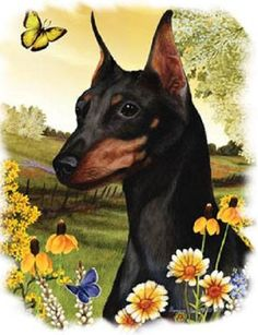 Miniature Pinscher Floral Dog T SHIRT  Item no. 878c - pinned by pin4etsy.com