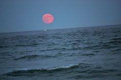 Moonrise over Hampton Beach