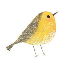 Illustrators - Neiko Ng - Illustration Bird Drawings, Cute Drawings, Bird Illustration, Bird Pictures, Watercolor Bird, Bird Prints, Bird Art, Beautiful Birds, Painting & Drawing