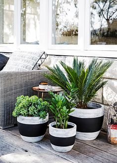 How to paint terracotta pots It's easy to give your boring old pots and planters new life to create outdoor arrangements with some extra flair – all you need is a little inspiration and help from style-savvy renovator Tara Dennis reveals how to turn plain Patio Plants, Indoor Plants, Outdoor Pots And Planters, Plants In Pots, Plant Pots, Pot Jardin, Decoration Plante, Painted Pots, Hand Painted