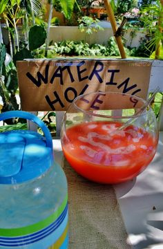 """Watering Hole"" beverage station OR activity w/ wading pool filled with cut sections of pool noodles"