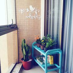 Jardim apartamento