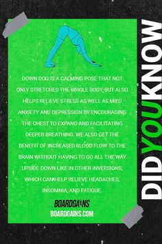 Did you know? Fun fitness fact of the day. Gym Guide For Beginners, Gym Workout For Beginners, Fitness Games For Kids, Exercise For Kids, Fit Board Workouts, Fun Workouts, Fitness Workouts, Fitness Facts, Fitness Facilities