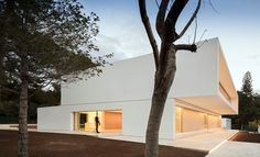 House Between The Pine Forest - Picture gallery