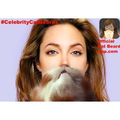 Angelina Jolie with a Catbeard!  Make you own Celebrity Catbeards!  Download the Official Catbeard App here: https://itunes.apple.com/WebObjects/MZStore.woa/wa/viewSoftware?id=658483064=8