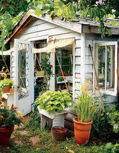 **Built from old** barn planks & vintage windows, a little greenhouse makeover