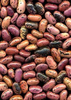 #Beans.