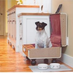 Dog Bed Design Ideas, Pictures, Remodel and Decor