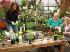 Fairy Gardening Class at Dennis' 7 Dees Cedar Hills Garden Center
