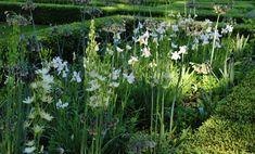 Robin Kramer Garden Design