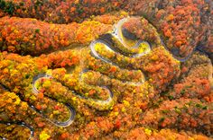日本の絶景はたくさんありますが、今回は「坂の絶景」をご紹介したいと思います。自然のつくりだす絶景や歴史を感じられる坂など、それぞれに魅力たっぷりです♪思わず上りたい!下りたい!と感じるような坂ばかりですよ。    1.いろは坂(日光)...