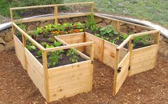 If you want to grow your own organic vegetables and you're looking for a low-maintenance garden, this complete system may be perfect for you.