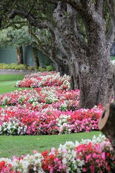 Butchart Gardens  Victoria, BC