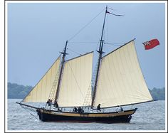 The Caroline, Lord Cobham's schooner is similar to this  30-ton replica of an 18th century New England pinky schooner.  Construction: Wood. Length Overall: 70' Length On Deck: 48' Beam: 14' Draft: 5' Crew: 15 Sail: Two-masted gaff-rigged. Keel: Full keel. DEADLY PERIL