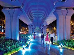 Mumbai needs more spaces like Matunga's under-flyover garden