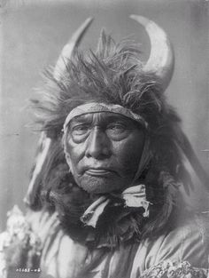 Bull Chief of the Crow. (Library of Congress)