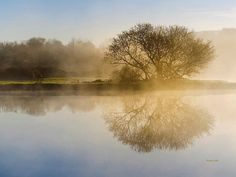 Beautiful Misty River Sunrise Art Print by Christina Rollo. All prints are professionally printed, packaged, and shipped within 3 - 4 business days. Choose from multiple sizes and hundreds of frame and mat options. Landscape Prints, Landscape Art, Tree Photography, Fine Art Photography, Sunrise Landscape, Thing 1, Nature Prints, Art Nature, Photo Tree