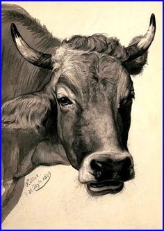 Cow Study - 1869 - Rudolf Koller    Rudolf Koller received many honors during his career.Honored with a gold medal at the exhibition in Bern in 1869, in Vienna in 1873 and in Munich in 1876, he will also receive a silver medal at the Paris Salon in 1879.