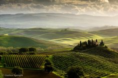 """""""Podere Belvedere"""" by @GSgarriglia.  #Italy #Photography"""