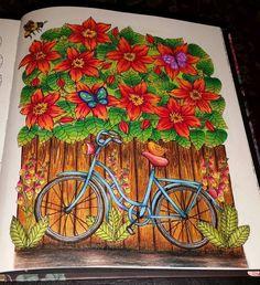Minha bicicleta do Blomster Mandala! (Foto só com flash tirada a noite) #blomstermandala #blomstermandalamålarbok #mariatrolle #coloriagepouradultes #coloringbook #colorfull #boracolorirtop #prazeremcolorir #divadasartes #oceanoperdido #jardimsecretoinspire #coreslindas #coresfortes #hannaminhafilhalinda #saudadesdaminhahanna