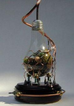 Decorative Plants From Old Light Bulbs › Zuza Fun