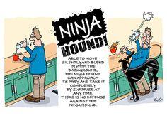 Richard Skipworth cartoon