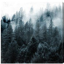 Canadian Scenic Views 'Over the Pine' Photographic Print on Wrapped Canvas