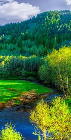 Yachats River Valley on the central Oregon coast • photo: Dennis Salon on deviantart
