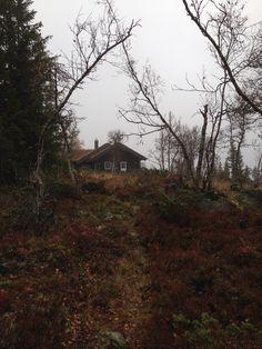 #Norwegian cabin
