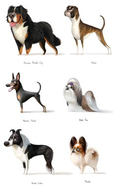 The pack of stunning dog illustrations by digital artist Varya Kolesnikova: dog breeds, various plots, and funny characters. Animal Design, Dog Design, Burmese Mountain Dogs, Dog Illustration, Cute Characters, Dog Art, Animal Drawings, Animals And Pets, Dog Breeds