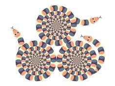 Ivy Press Optical Illusion