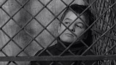 The 400 Blows Language: French The Movie: Francois Truffaut's first film is a coming-of-age classic, telling the tale of rebellious. 10 Film, Great Films, Good Movies, Jean Pierre Leaud, Children Of The Revolution, Francois Truffaut, French New Wave, Films Cinema, Den Of Geek