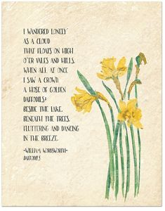 Golden Daffodils – William Wordsworth Inspirational Literary Quote from Daffodils. Fine Art Paper, Laminated, or Framed. Multiple Sizes Available For Classroom, Library, Home or Nursery – Famous Last Words Writers And Poets, Poem Quotes, Life Quotes, Qoutes, Rumi Quotes, Nature Quotes, Success Quotes, Daffodils Poem, Daffodils Planting