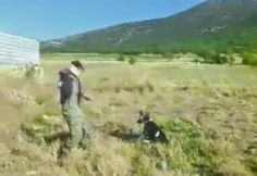 Turkish Boy Throws Rocks At A Defenseless Dog While His Friend Records The…