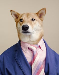 """Pink Steel""  Bloomberg Businessweek x Menswear Dog"