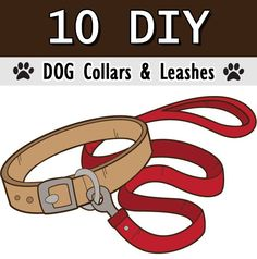 In our gallery you will find a collection of 10 ideas on how to make a really cool collar or leash for your dog.