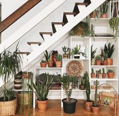 Love the white, under the staircase bookshelf covered in plant life!