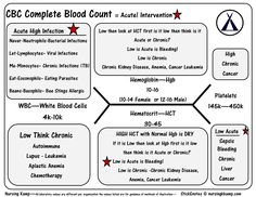 Bmp chem7 fishbone diagram explaining labs from the blood book cbc complete blood count wbc platelets hgb hct bmp fishbone diagram explaining labs from the blood book theses are the labs you should know hyponatrem ccuart Images