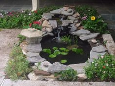 Pond ideas for small space