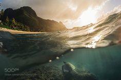 by tomapaul #nature #photooftheday #amazing #picoftheday #sea #underwater