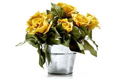 """9"""" Roses in Silver Bucket, Yellow on OneKingsLane.com Lasting beauty: Nine freeze-dried yellow roses are artfully arranged in this simple pot.  From The Garden specializes in beautiful, modern designs of dried and preserved floral wreaths and arrangements.  Keep indoors out of direct sunlight and away from heating elements.  Size:  9"""" x 11""""."""