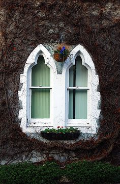 Woodvale Lodge, Hanover, Brighton, England