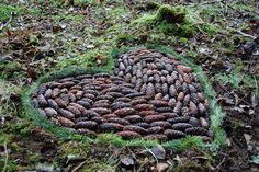 pinecone forest art