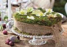 Gartenzauber   Blumenschmuck - Moostorte - Gartenzauber