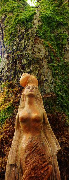 Spirit Rising Driftwood and Seashell Sculpture by ShapingSpirit
