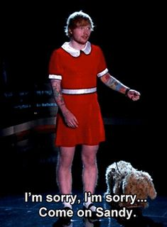 Which is based on the moment the singer dressed up as Annie on <i>Jimmy Kimmel Live</i>.