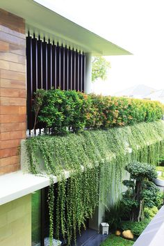 Fabulous DIY Vertical Garden Design Ideas Do you have a blank wall? do you want to decorate it? the best way to that is to create a vertical garden wall inside your home. A vertical garden wall, also called a… Continue Reading → Vertical Garden Design, Backyard Garden Design, Backyard Patio, Backyard Landscaping, Vertical Gardens, Landscaping Ideas, Yard Design, House Design, Diy Pergola