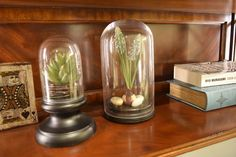 レストレーションハードウェア(Restoration Hardware)装飾オブジェ/Petite Glass Cloches Small and Medium