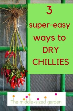 Whether you grow your own chillies or buy them, these three easy tips for drying chillies will save you money and give you chillies to add to recipes for months to come! Growing Plants, Growing Vegetables, Chilli Plant, Dried Chillies, Garden Privacy, Colorful Garden, Easy Garden, Grow Your Own, Cool Plants